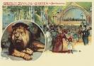 Zoo-Postkarte aus dem Jahr 1906